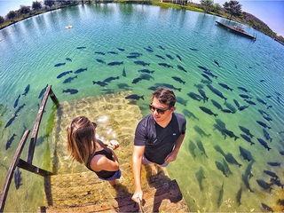 fala serio venha ver esses peixes de bonito com transparencia dos rios